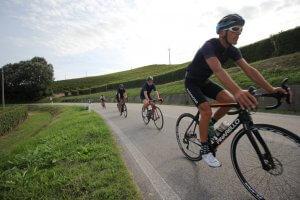 Piedmont bike rentals