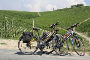 Piemont bike rentals