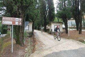 Chianti bike rentals