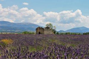 Provence bike rentals