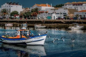 Algarve bike rentals